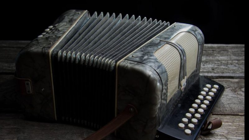 Protégé: L'accordéon, de Serge Gainsbourg, mis en musique et interprété par les élèves du Lycée St Exupéry et les jeunes du conservatoire de la Pintana